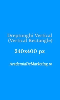 dreptunghi vertical 240x400 vertical rectangle